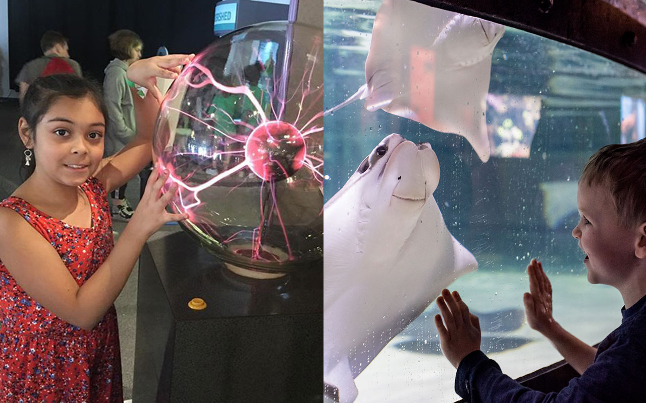 From moon jellyfish to moon landings, visit the Science Center and Great Cleveland Aquarium together for one low price!